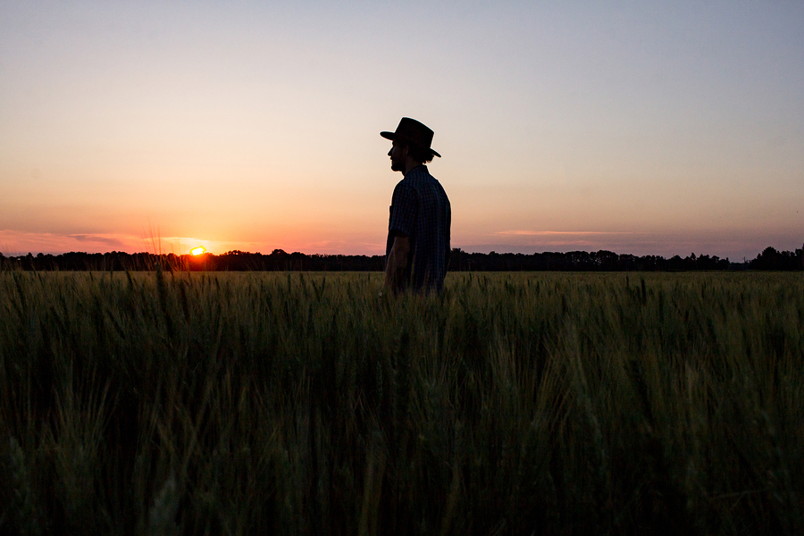 The High Hopes of Farmers